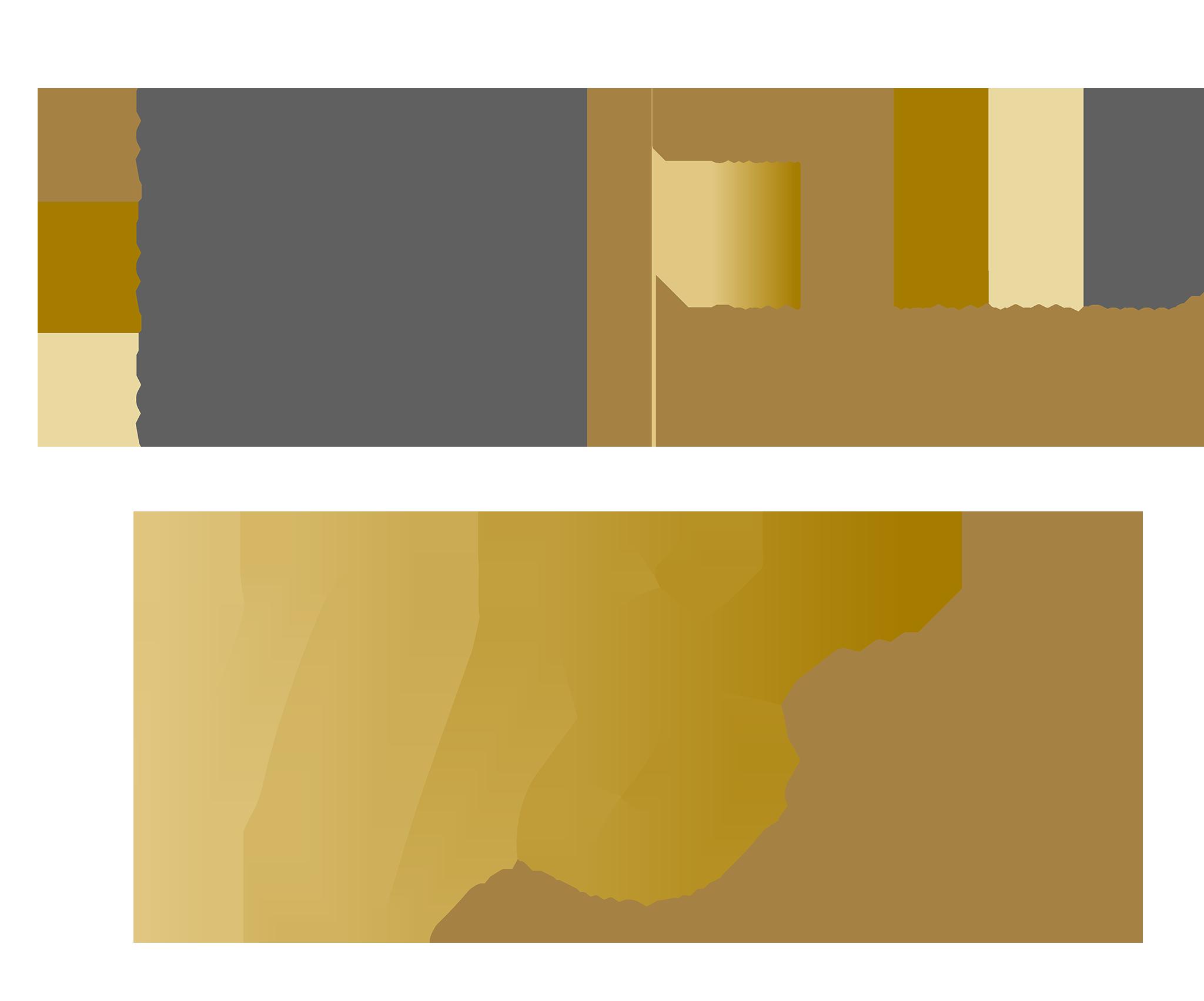 NIchol Stark Logo 1